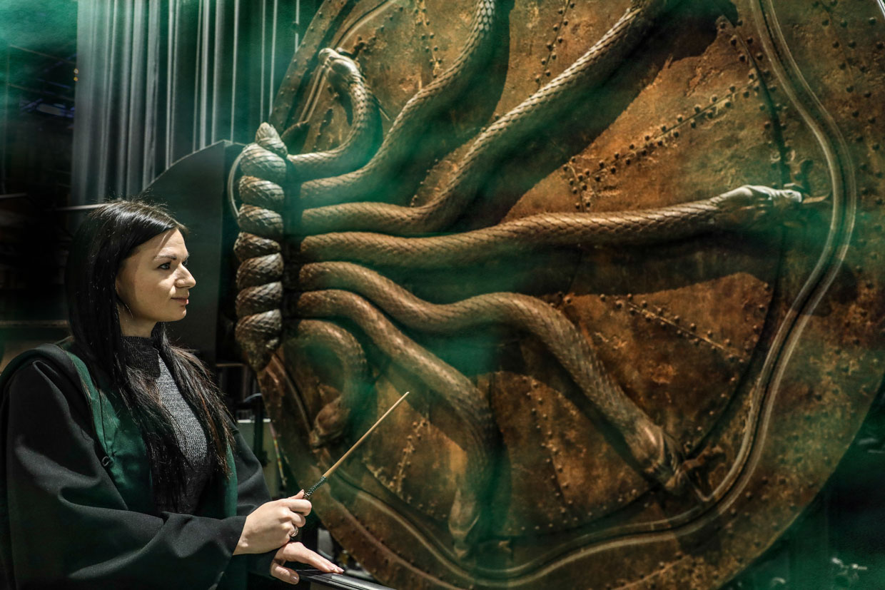 Slytherin fan stood in front of the Chamber of Secrets door