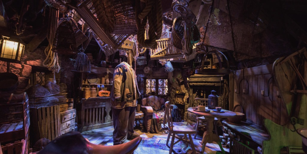Inside Hagrids Hut